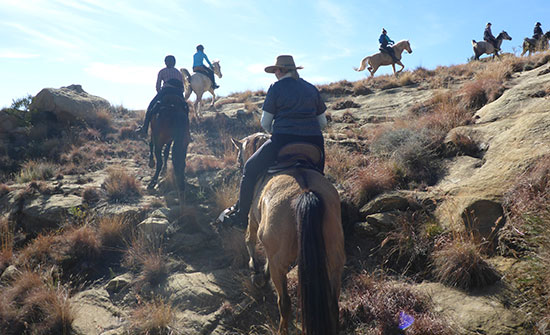 moolmanshoek-activities-horse-riding-ultimate-riding-experience