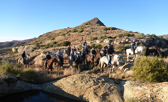 moolmanshoek-activities-horses-riding-to-rosendal