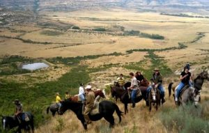 horse riding and leadership